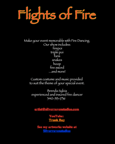 Flights of Fire website designed circa 2002
