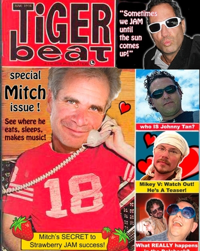 Tiger Beat cover